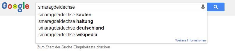 Google Suggest für Smaragdeidechse