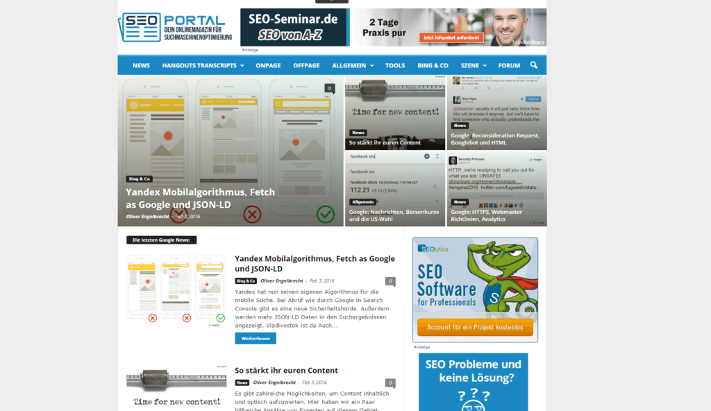 Screenshot SEO Portal Blog