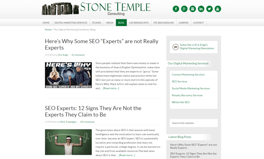 Screenshot Stone Temple Consulting